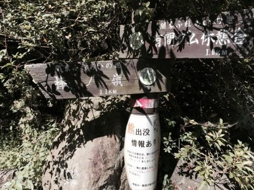 棒ノ折山8