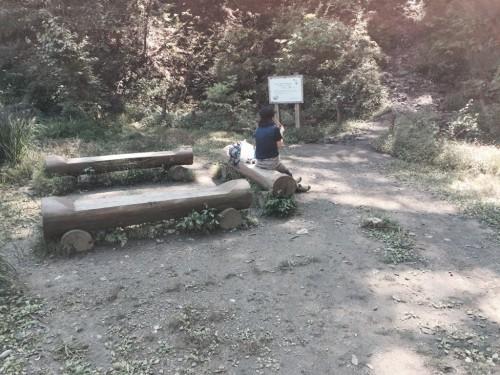 棒ノ折山19