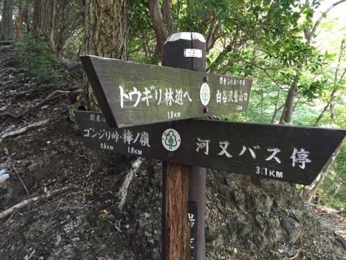 棒ノ折山22