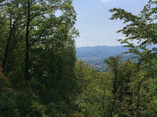 美の山15