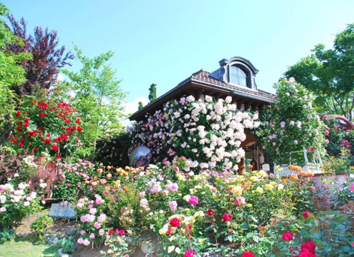 オルゴール森バラ園