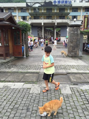 台湾132