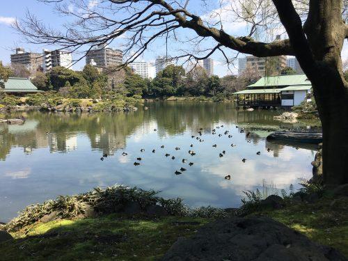 桜サイクリング13