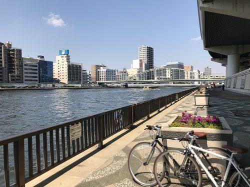 桜サイクリング19