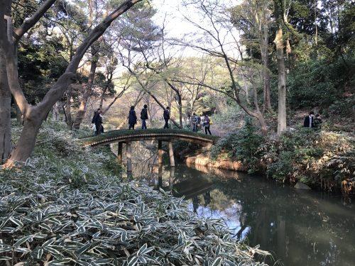 桜サイクリング36