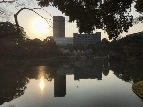 桜サイクリング41