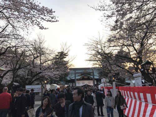 桜サイクリング43