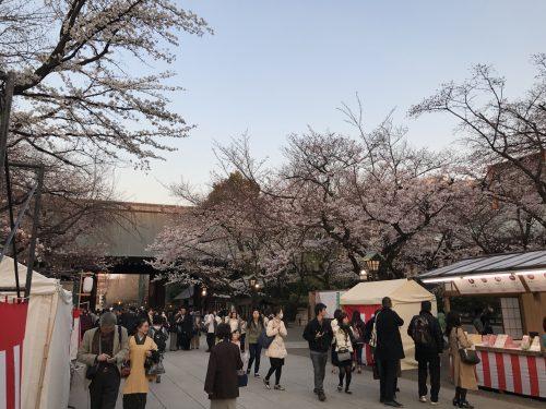 桜サイクリング44