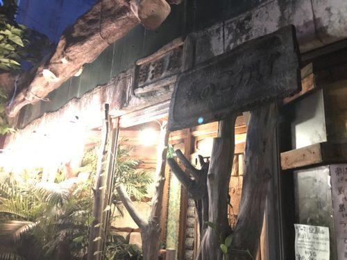 石垣島12