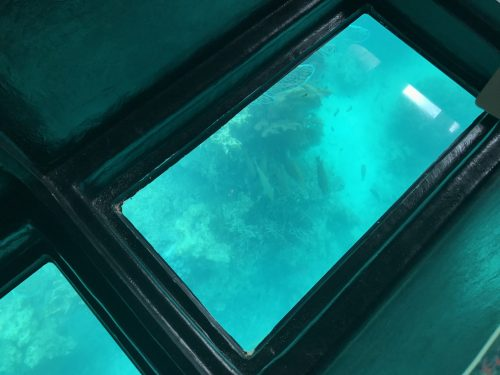 石垣島18