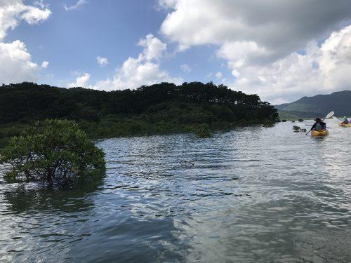 西表島10